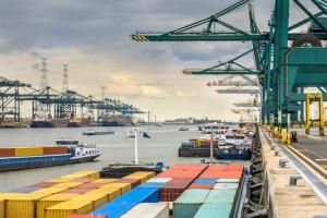 Recordvangsten drugs in Antwerpse haven